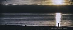 Dejemos sitio al nuevo (Adisla) Tags: olympus penf mzuiko 30mm f45 macro mar paisaje humano amanece