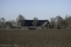 Biesbosch architecture2 (Eduard van Bergen) Tags: biesbosch rand architecture farmland mansion cottage lodge estate haus maison huis landhouse landhuis land field rural holland dutch niederlande netherlands holanda bild picture photo foto photograph vista agriculture living family life barn schuur shed existance trees farming boerderij polder wood dike dijk roof winter 2019 january sun light shadow stal fuji fujifilm xe1 xc50230oisii