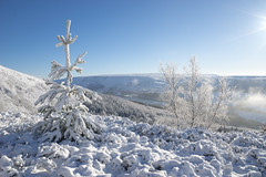 Snow in the Longdendale Valley (Keartona) Tags: tintwistle glossop derbyshire england pennines hills snowy snow winter landscape january morning beautiful nature trees spruce tree longdendale valley sunny
