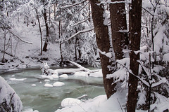 Rutland, Vermont - 1/13/19 (myvreni) Tags: vermont winter snow nature outdoors stream