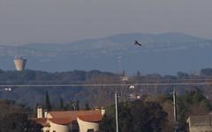 Milan royal - IMG_5873 (6franc6) Tags: occitanie languedoc gard 30 petitecamargue janvier 2019 6franc6 vélo kalkoff vae