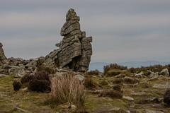 SASH-1 (Michael Yule - I Can See For Miles) Tags: shropshirehills nikond7100 outdoors unitedkingdom england landscape greatbritain countryside