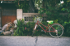 Parked (Bright Ideas with Chan Udarbe) Tags: adobe cc creativecloud d7200 ilocossur lightroom nikon photoshop bicycle object fun color colors flickr sigma30mmf14exdchsm analogefexpro2 niksoftware
