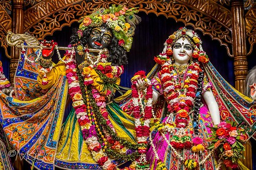 Flickriver: Photoset 'ISKCON Mayapur Deity Darshan 09 Feb 2019' by