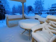 Overnight Snowstorm (starmist1) Tags: february winter cold footofsnow overnightstorm storm snowstorm deck table railing chairs pergola backyard