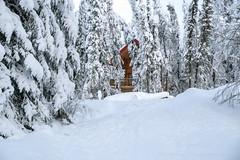 _ROS3583-Edit.jpg (Roshine Photography) Tags: house yukonquest winter environmental dawsoncity yukonterritory snow yukon canada ca
