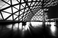 A roof of glass (Iso_Star) Tags: monochrom k21 museum düsseldorf sony samyang ilce7m3 samyangaf14mmf28 14mm schwarzweiss bw kunst orbit tomássaraceno inorbit
