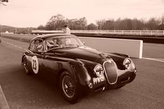 Jaguar XK150 1958, HRDC Track Day, Goodwood Motor Circuit (6) (f1jherbert) Tags: sonya68 sonyalpha68 alpha68 sony alpha 68 a68 sonyilca68 sony68 sonyilca ilca68 ilca sonyslt68 sonyslt slt68 slt sonyalpha68ilca sonyilcaa68 goodwoodwestsussex goodwoodmotorcircuit westsussex goodwoodwestsussexengland hrdctrackdaygoodwoodmotorcircuit historicalracingdriversclubtrackdaygoodwoodmotorcircuit historicalracingdriversclubgoodwood historicalracingdriversclub hrdctrackday hrdcgoodwood hrdcgoodwoodmotorcircuit hrdc historical racing drivers club goodwood motor circuit west sussex brown white sepia bw brownandwhite