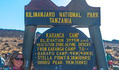 _FOU9672.jpg (Murray Foubister) Tags: africa gadventures spring treking tanazania flora travel 2018