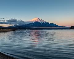 Beni-Fuji at Lake Yamanaka (shinichiro*) Tags: 20181230ds55558 2019 2018 crazyshin nikond4s afsnikkor2470mmf28ged fuji yamanashi japan jp lakeyamanaka december winter 46597280931 candidate