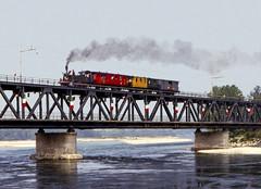 FNM 200.05 Turbigo 13/09/1987. Foto Roberto Trionfini (stefano.trionfini) Tags: train treni bahn zug dampf steam fnm 20005 turbigo italia italy