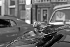 lady ornament (bergytone) Tags: bw blackandwhite film olympus om2n 35mm monochrome kentmere 100 xtol hoodornament