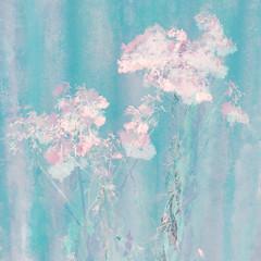 07/365 (Jane Simmonds) Tags: forestofdean iphone multipleexposure weeds seedheads pastels impressionist 3652019 winter blur