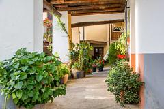 soportal calle logroño Guadalupe Caceres (Rafael Gomez - http://micamara.es) Tags: esp españa extremadura guadalupe soportal calle logroño caceres