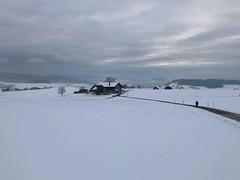 Winter 2019: Lugibächli Biglen (Martinus VI) Tags: winter winterlandschaft hivers schnee snow nieve neige emmental kanton canton de bern berne berna berner bernese schweiz suisse suiza switzerland svizzera swiss y190112 martinus6 martinus6xy martinus martinusvi