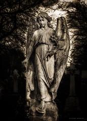 Visions of Angels (RichardK2018) Tags: angel grimreaper photoshopexpress vignette zuiko40150mm olympusem1mk2 snapseed monochrome nottingham rockcemetery cemetery graveyard monument statuary gothic victorian