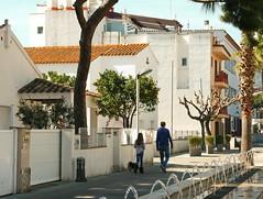 IMG_9504-2 (maria.urman) Tags: platja daro spain españa cataluña costa brava