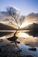 Lone Tree (kris shaw) Tags: wales snowdonia anglesey northwales waterfalls mountains travel longexpo seascape sunset sunrise cymru lakes trfan snowdon penmon