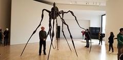 Louise Bourgois Spiders (danieljsf) Tags: momasf sfmoma museumofmodernart sanfrancisco art museum spider spiders louisebourgois sculpture