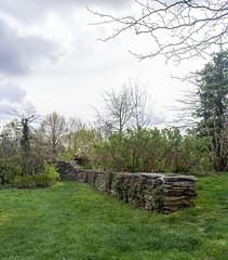 DSC03965-Panorama (patricklardeau) Tags: 40mm a7rii arboretum assemblages chatenaymalabry voigtlander