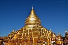 Bagan, Shwe vi gone (Neal J.Wilson) Tags: golden gold stupa temple pagoda buddhisttemple buddhism religion worship myanmar burma bagan