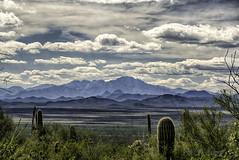 Quinlan Mountains, Tucson, Arizona (TAC.Photography) Tags: quinlanmountains arizona tucson southwest western mountains blue landscape landscapephotography arizonapassages 2019yip tucsonmountainpark