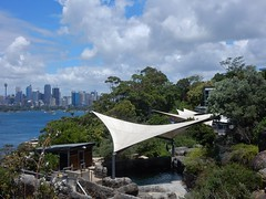 Sails by the Harbour (mikecogh) Tags: tarongapark zoo sailcloth shade pool harbour harbor bush cbd