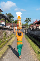 (kuuan) Tags: bali lady woman offerings head village path row odalan festival sonyrx100iii