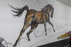Horse Power (Cheetah_flicks) Tags: kunstenaarsgrafischontwerper dzia antwerpen plaatsen belgië streetart beeldendekunst parkingstadsschouwburgantwerpen europa antwerp belgium europe