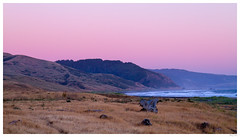 California Lost Coast (thuygiaho) Tags: lostcoast northerncalifornia coasts sunset ferndale mattoleroad ocean sea