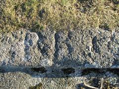 Templer Way RRI at SX 75579 77660 (Bridgemarker Tim) Tags: templerway stonemasonsmarks dartmoor railways granitetramway haytor