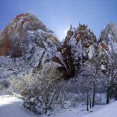 Zion National Park in the Snow (swissuki) Tags: zion national nature park landscape mountain sky snow usa ut utah