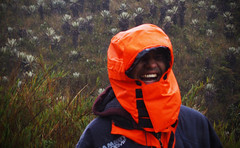 Sangton en Siecha (@decortz) Tags: paramo mountains macro rain water agua siecha chingaza olympus portrait budhism