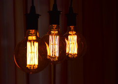 Thank you, Mr. Edison (Gabriel Kay) Tags: light bulb vintage edison antique spherical globe filament incandescent tungsten oldstyle design traditional interior electric hanging object