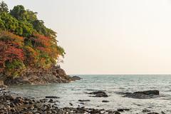 Path on Ko Chang island, Thailand (George Pachantouris) Tags: ko chang island tropic bang bao beach palm tree coconut tropical warm summer sun