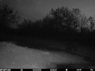 2019-03-25 20:29:44 - Crystal Creek 2