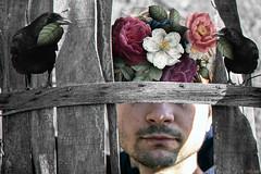 Crow (vetlart) Tags: crow flowers nature abandoned