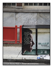 The Story (Doyle Wesley Walls) Tags: lagniappe 1682 philadelphia philly unlitterus litter street message sign appeal beauty trash words text doylewesleywalls