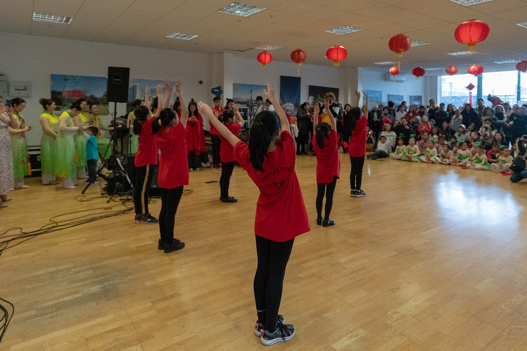 YEAR OF THE PIG - LUNAR NEW YEAR CELEBRATION AT THE CHQ IN DUBLIN [OFTEN REFERRED TO AS CHINESE NEW YEAR]-148943