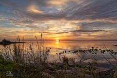 Sunset over Lake Washington (Michael Seeley) Tags: canon florida lakewashington melbourne sunset mikeseeley
