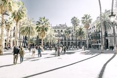Plaça Reial (Max Pa.) Tags: barcelona spanien spain sun sky city cityscape travel canon 5d 2470mm placa reial architektur architecture palmen palm blue light