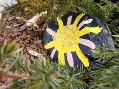 Make your own sunshine (dankeck) Tags: centralohio franklincounty rock painted art artwork sun paint yellow bush nestled shrub motivation motivational happy upperarlington park ohio suburb hidden