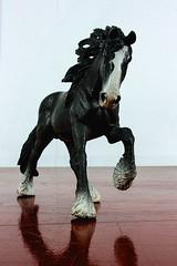 Black Horse (Morten Bjerg) Tags: horses animals shire toys canoneos400d mortenbjerg studioshot