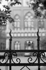 Architecture, Riga, Latvia (KronaPhoto) Tags: latvia sommer