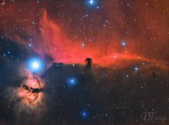 Horse Head and Flame Nebula (Delberson Tiago) Tags: astronomy astrophotography astrofoto astrofotografia astronomia astrophoto apod qhy qhy163m baader optolong oriontelescopes orion nasa nebulae nightsky nebulosa night nebula nature deepsky dso darknebula universe astrometrydotnet:id=nova3144443 astrometrydotnet:status=solved