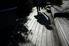 Shadow (Zabilio Zabiliel) Tags: light sun shadow leicacl leica