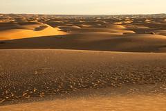 Golden landscape (s_andreja) Tags: mauritania chinguetti sand dune desert