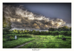 Pathways (Pearce Levrais Photography) Tags: canon hdr orchard cloud outside outdoor nature fence tombstone cemetery headstone moody sunlight sunset sundown thunder lightning