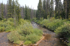 Wise River, Montana (TexasExplorer98) Tags: historic ghosttown hiking forest nationalforest pioneermountains pioneermountainscenicbyway coolidge montana