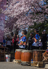 2019 Taiko Takeover 31 Mar 2019 (919) (smata2) Tags: washingtondcdcnationscapital taikotakeover taikodrummers